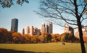 Central Park, like all parks, is an example of landscape architecture.